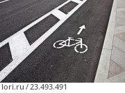 Купить «Указатель велодорожки на мостовой», фото № 23493491, снято 28 августа 2015 г. (c) Victoria Demidova / Фотобанк Лори