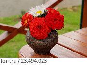 Букет цветов в чугунном горшке. Стоковое фото, фотограф Кохан Пётр / Фотобанк Лори