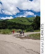 Купить «Абхазия. Горы», фото № 23494875, снято 12 июля 2016 г. (c) Светлана Овчинникова / Фотобанк Лори