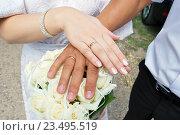 Руки невесты и жениха. Стоковое фото, фотограф Юлия Волкова / Фотобанк Лори