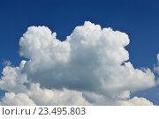 Купить «Кучевые облака на голубом небе», фото № 23495803, снято 1 июля 2016 г. (c) Сергей Трофименко / Фотобанк Лори