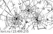 Купить «Фон с паутиной», иллюстрация № 23499215 (c) Одиссей / Фотобанк Лори