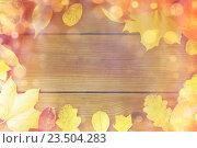 Купить «frame of many different fallen autumn leaves», фото № 23504283, снято 19 октября 2015 г. (c) Syda Productions / Фотобанк Лори