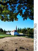 Вид Приоратского дворца в Гатчине (2016 год). Редакционное фото, фотограф Андрей Силивончик / Фотобанк Лори