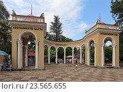 Купить «Колоннада главного входа в Ботанический сад, Сухум, Абхазия», эксклюзивное фото № 23565655, снято 19 июля 2016 г. (c) Алексей Гусев / Фотобанк Лори