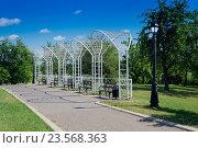Парк, город Минск. Стоковое фото, фотограф Дмитрий Голуб / Фотобанк Лори