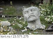 Голова ленина лежит в ромашках. Редакционное фото, фотограф Илья Ордовский-Танаевский / Фотобанк Лори