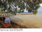 Купить «Пожилая пара сидит на лавочке под деревом у Черного моря, Сухум, Абхазия», эксклюзивное фото № 23573675, снято 19 июля 2016 г. (c) Алексей Гусев / Фотобанк Лори