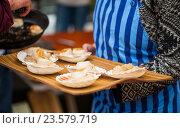 Купить «close up of scallop snacks garnish on seashell», фото № 23579719, снято 11 июня 2016 г. (c) Syda Productions / Фотобанк Лори