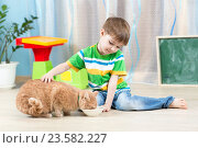 Купить «child boy feeding red cat», фото № 23582227, снято 12 декабря 2014 г. (c) Оксана Кузьмина / Фотобанк Лори