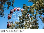 Купить «Городское колесо обозрения в Хабаровске на фоне голубого неба деревьев», фото № 23584427, снято 27 августа 2016 г. (c) Катерина Белякина / Фотобанк Лори