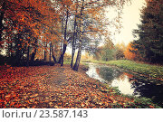 Купить «Autumn picturesque landscape in vintage colors - autumn trees and narrow forest river in cloudy weather», фото № 23587143, снято 1 января 2009 г. (c) Зезелина Марина / Фотобанк Лори