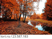 Купить «Autumn bright forest landscape with autumn trees and narrow forest river in cloudy weather.», фото № 23587183, снято 1 января 2009 г. (c) Зезелина Марина / Фотобанк Лори