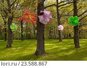 Волшебный лес с цветами на деревьях. Стоковое фото, фотограф Сергей Панкин / Фотобанк Лори