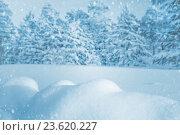 Купить «Зимний пейзаж», фото № 23620227, снято 9 января 2016 г. (c) Икан Леонид / Фотобанк Лори