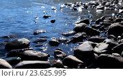 Купить «Stones on the shallow water of Lower Multinskoe lake in Altai», видеоролик № 23625995, снято 24 сентября 2016 г. (c) Serg Zastavkin / Фотобанк Лори