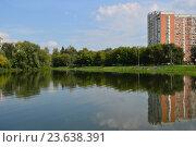 Купить «Капустинский пруд. Район Свиблово. Москва», эксклюзивное фото № 23638391, снято 21 августа 2016 г. (c) lana1501 / Фотобанк Лори