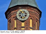 Купить «Башня Кафедрального собора Кёнигсберга. Символ города Калининград (до 1946 кода Кёнигсберг), Россия», фото № 23662207, снято 9 июня 2013 г. (c) Сергей Трофименко / Фотобанк Лори
