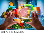 Купить «Human hands reaching for food at night in the open refrigerator», фото № 23662335, снято 30 сентября 2016 г. (c) Андрей Армягов / Фотобанк Лори