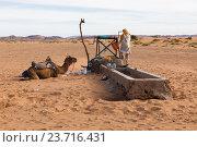 Бербер и верблюд возле колодца в пустыне (2015 год). Стоковое фото, фотограф Михаил Пряхин / Фотобанк Лори