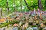 Светлогорск. Макет средневекового Кенигсберга., фото № 23722463, снято 27 августа 2016 г. (c) Sergei Gushchin / Фотобанк Лори
