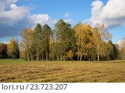 Осенний пейзаж со скошеным полем. Россия. Стоковое фото, фотограф Виктор Карасев / Фотобанк Лори