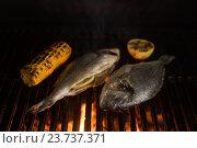 Купить «Grilled dorado fish», фото № 23737371, снято 3 ноября 2015 г. (c) Jan Jack Russo Media / Фотобанк Лори