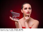 Купить «Young woman with shopping cart», фото № 23743875, снято 18 июля 2016 г. (c) Elnur / Фотобанк Лори