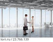 Business partners handshake . Mixed media, фото № 23766139, снято 29 марта 2017 г. (c) Sergey Nivens / Фотобанк Лори