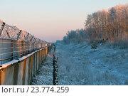 Купить «Зимний пейзаж: белый лес, и покрытый инеем забор с колючей проволокой(егозой)», эксклюзивное фото № 23774259, снято 10 января 2016 г. (c) Сергей Крамарев / Фотобанк Лори