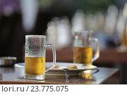 Купить «Бокалы светлого пива на столе», фото № 23775075, снято 17 сентября 2016 г. (c) Алексей Сварцов / Фотобанк Лори