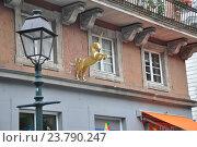Купить «Фасад дома с золотым  единорогом на улице Ахена. Германия, Европа», фото № 23790247, снято 6 октября 2013 г. (c) Ирина Быстрова / Фотобанк Лори