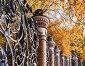 Михайловский сад, фигурная металлическая ограда в обрамлении желтых осенних деревьев, Санкт-Петербург, Россия, фото № 23803407, снято 3 октября 2016 г. (c) Зезелина Марина / Фотобанк Лори