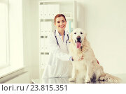 Купить «happy doctor with retriever dog at vet clinic», фото № 23815351, снято 19 июля 2015 г. (c) Syda Productions / Фотобанк Лори