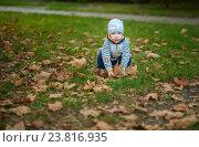 Мальчик сидит в листьях на корточках (2016 год). Редакционное фото, фотограф Елена Ганненко / Фотобанк Лори