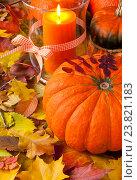Оранжевые тыквы и горящая свеча, на ковре из осенних листьев. Стоковое фото, фотограф Елена Лобовикова / Фотобанк Лори