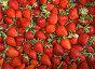 Фон из спелой красной клубники, фото № 23824771, снято 19 июня 2016 г. (c) Фотограф / Фотобанк Лори
