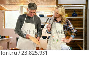 Купить «Male and female potters checking plates and bowl», видеоролик № 23825931, снято 22 июля 2018 г. (c) Wavebreak Media / Фотобанк Лори
