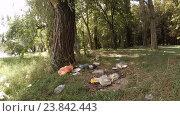 Купить «Нелегальная свалка мусора в лесу», видеоролик № 23842443, снято 8 июля 2016 г. (c) Tatiana Kravchenko / Фотобанк Лори