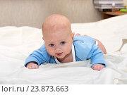 Купить «Малыш лежит на животе», фото № 23873663, снято 24 февраля 2015 г. (c) Андрей Некрасов / Фотобанк Лори