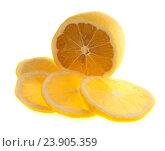 Купить «Спелый лимон, изолированно на белом фоне», фото № 23905359, снято 16 октября 2016 г. (c) Литвяк Игорь / Фотобанк Лори