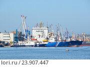 Купить «Владивосток, порт летом в ясный день», фото № 23907447, снято 13 ноября 2018 г. (c) Овчинникова Ирина / Фотобанк Лори