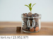 Купить «Plant growing out of coins jar», фото № 23952971, снято 10 августа 2016 г. (c) Wavebreak Media / Фотобанк Лори