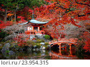 Купить «Japanese building in Daigoji temple in kyoto with autumn scene», фото № 23954315, снято 29 ноября 2014 г. (c) easy Fotostock / Фотобанк Лори