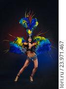 Купить «Симпатичная молодая девушка в красочном карнавальном костюме с перьями на темном фоне», фото № 23971467, снято 24 января 2015 г. (c) Евгений Захаров / Фотобанк Лори