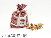 Купить «Льняной мешочек с сушеными белыми грибами», эксклюзивное фото № 23974191, снято 11 сентября 2016 г. (c) Dmitry29 / Фотобанк Лори