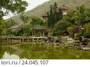 """Озеро черепах. Центр Буддизма """"Наньшань"""" (2016 год). Стоковое фото, фотограф Анна Сапрыкина / Фотобанк Лори"""