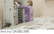 Купить «Женщина, работающая на компьютере в типографии», видеоролик № 24082095, снято 22 марта 2019 г. (c) Константин Шишкин / Фотобанк Лори