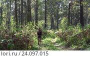 Young blonde woman tourist with a backpack goes along path in siberian forest, видеоролик № 24097015, снято 11 сентября 2016 г. (c) Serg Zastavkin / Фотобанк Лори