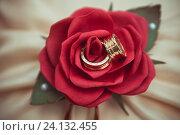 Купить «Обручальные кольца в подушечке с цветком», фото № 24132455, снято 30 апреля 2016 г. (c) Блинова Ольга / Фотобанк Лори